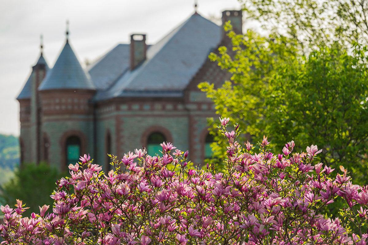 Scenic photo of campus