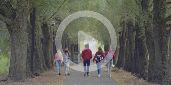 willow path scenic shot with overlaid video play button